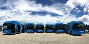 byd-airport-sydney-elektrobusse