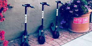 bird-scooter-sharing
