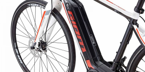 giant-e-bike-pedelec-symbolbild