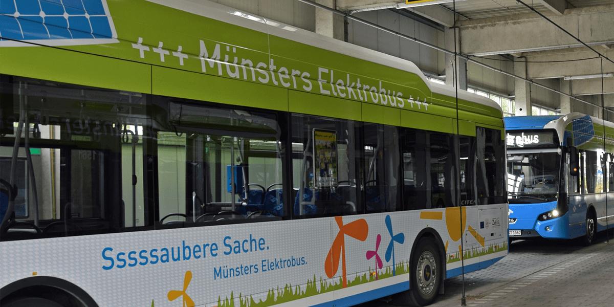 stadtwerke-muenster-elektrobus-vdl-02