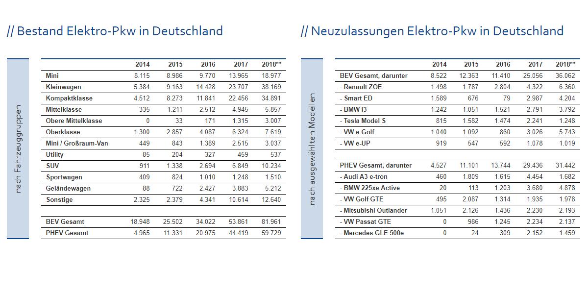 zsw-bestand-weltweit-bev-februar-2019-deutschland